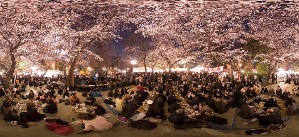Sakura 2020